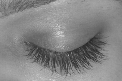 best eyelash extensions around me